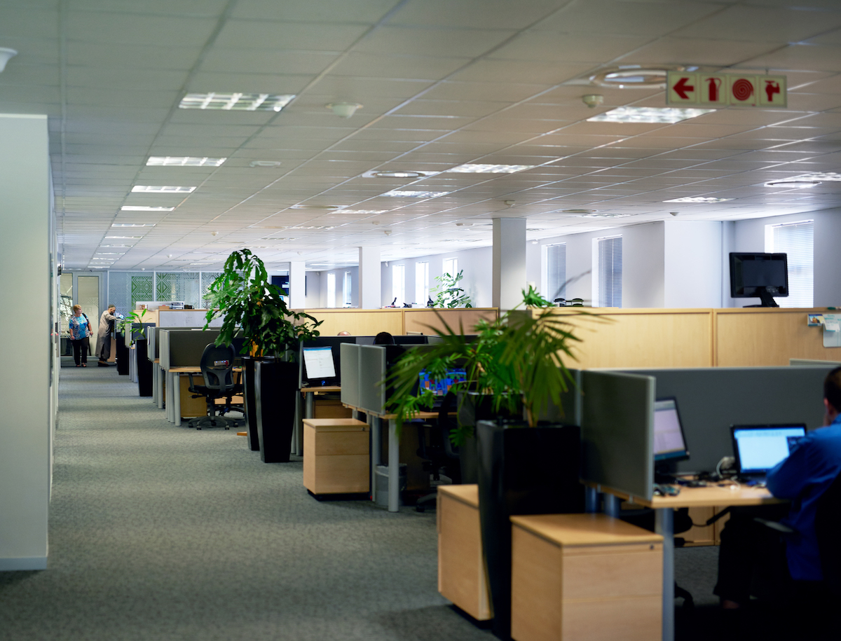 A business office with natural lighting and plants.